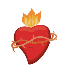 sacred heart crown flame vector image