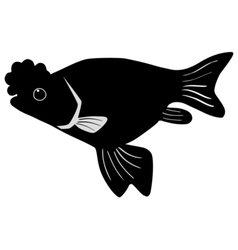 Silhouette of porkfish vector image