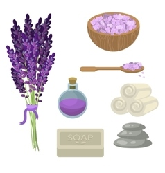 Spa salon relaxation accessories vector