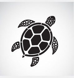 Turtle design on a white background reptile vector