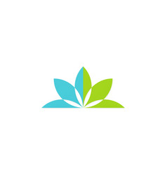 green lotus flower logo vector image