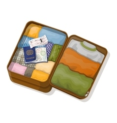 Open suitcase with clothes passports with visas vector image