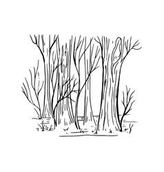 painted fragment of forest vector image vector image