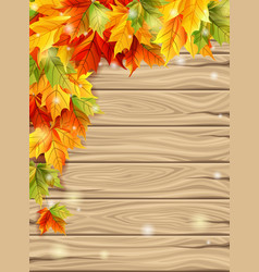 autumn maple leaves effect sun glow vector image
