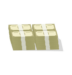 Bundles of banknotes icon vector