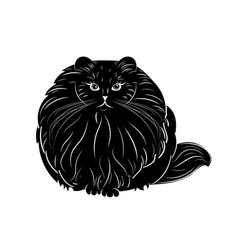 Fat and furry cat vector