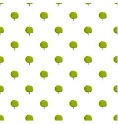 maple tree pattern seamless vector image