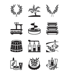 Olives and production olive oil vector