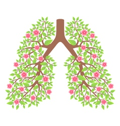 lungs healthy vector image