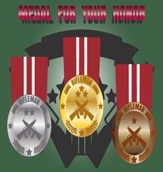 Medal skill honor rifleman set vector image