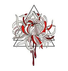 Bloody Chrysanthemum vector image vector image