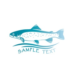 fish trout vector image