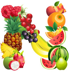 Letter n composed different fruits with leaves vector