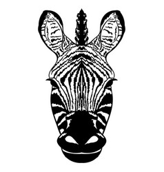 isolated head of striped zebra sketch vector image