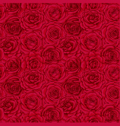 beautiful vintage seamless pattern with red roses vector image