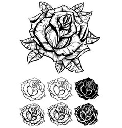 Black and white graphic realistic detailed rose vector