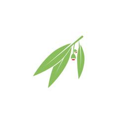 Eucalyptu leaf design vector