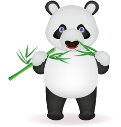 Funny panda eating bamboo vector image