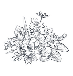 hand drawn bouquet spring flowers and vector image
