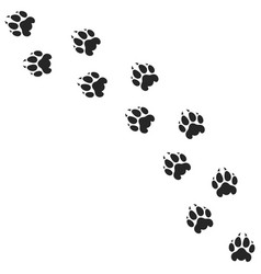 Lion paw print silhouette vector