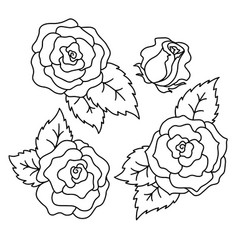 roses black and white linear drawing vector image