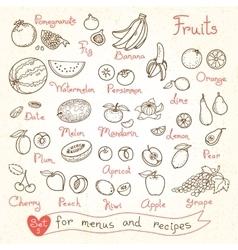 Set drawings fruit for design menus recipes vector