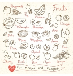 Set drawings of fruit for design menus recipes vector