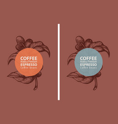 Set labels for coffee beans in retro style vector