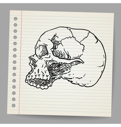 Doodle Skull vector image vector image