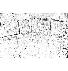 DSC 0042135 vector