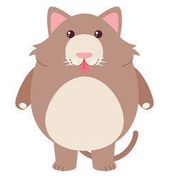 Fat rat on white background vector