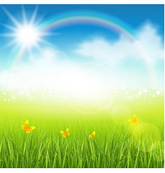 Summer meadow with grass vector