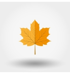 Yellow maple leaf icon vector