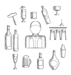 Bartender with alcohol and cocktails vector image vector image