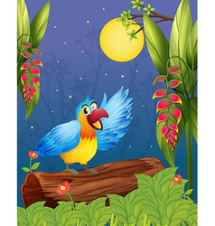 A colorful parrot in the middle of the woods vector image