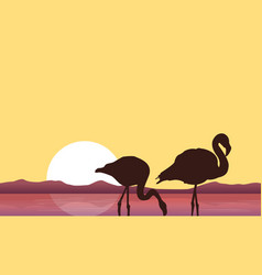 At sunset flamingo scenery silhouettes vector
