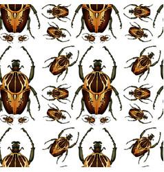 Beetle bug seamless pattern vector