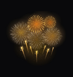firework celebration vector image