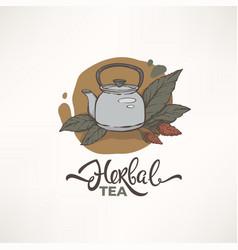 greenherbal organic tea logo template design vector image