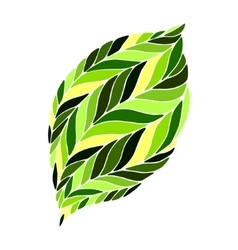 image of a leaf in shades of green on a vector image