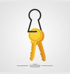 Keys on white background vector