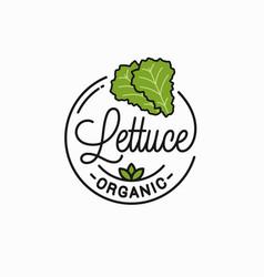 Lettuce vegetable logo round linear lettuce vector
