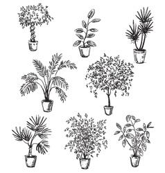 set home flowers in pots vector image