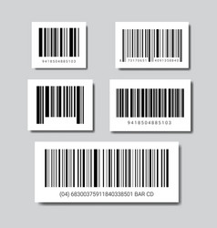 Set of sample bar codes for scanning icon vector