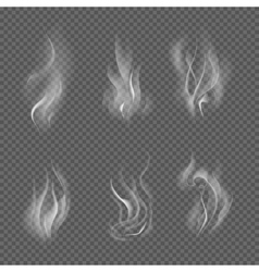 Realistic cigarette smoke waves on transparent vector image