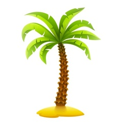 Coconut palm tree on sand vector image vector image