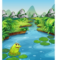 River scene with frog on leaf vector image