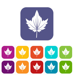 Currant tree leaf icons set flat vector