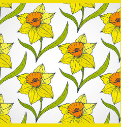 Daffodil seamless patterns vector