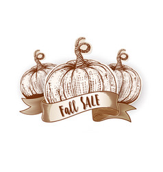 Fall sale calligraphy on ribbon vector